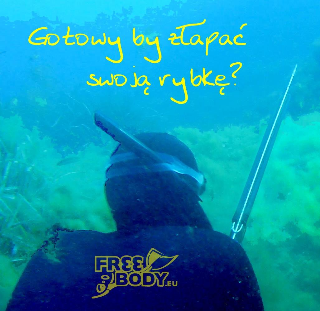 Szkolenie na kartę łowcy podwodnego
