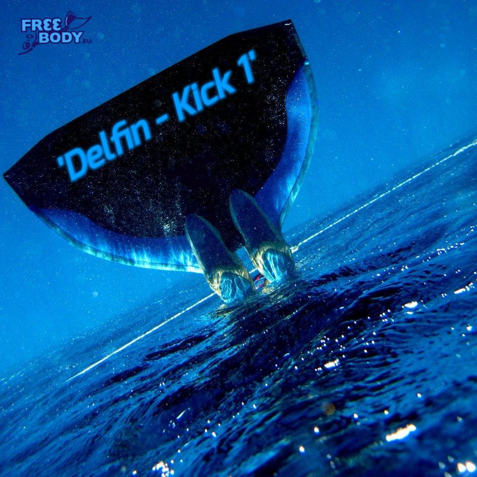 <h4>Szkolenie pływania w monopłetwie - <b>Delfin - KICK 1</b></h4>